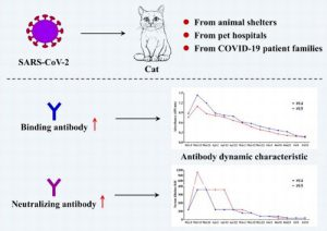 Graphic from abstract of A serological survey of SARS-CoV-2 in cat in Wuhan