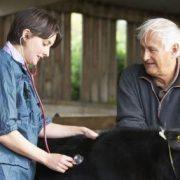 Farmer and vet